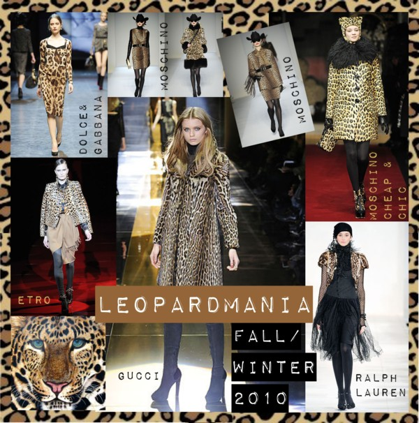 Leopardmania