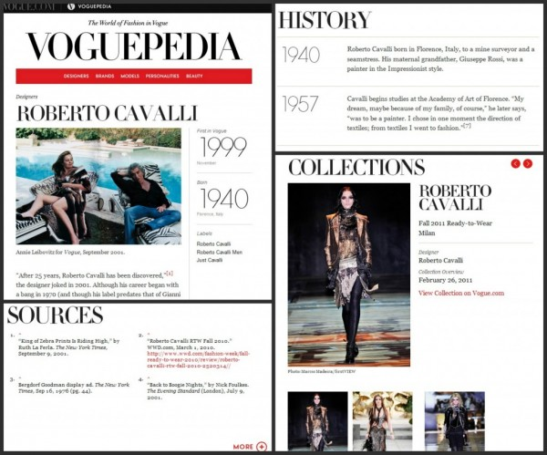 Roberto On Voguepedia
