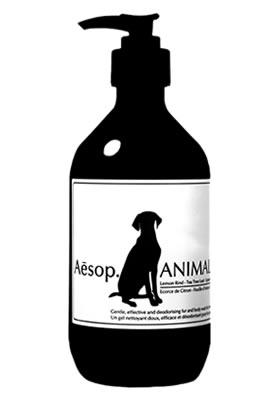 aesop_animal