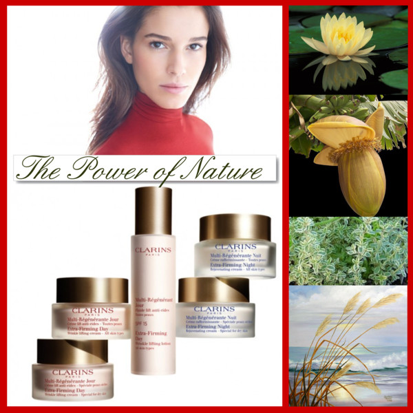 Clarins Power of Nature