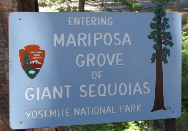 Giant Sequoias Sign