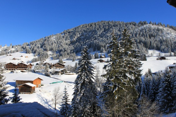 Alpina_Gstaad_landscape
