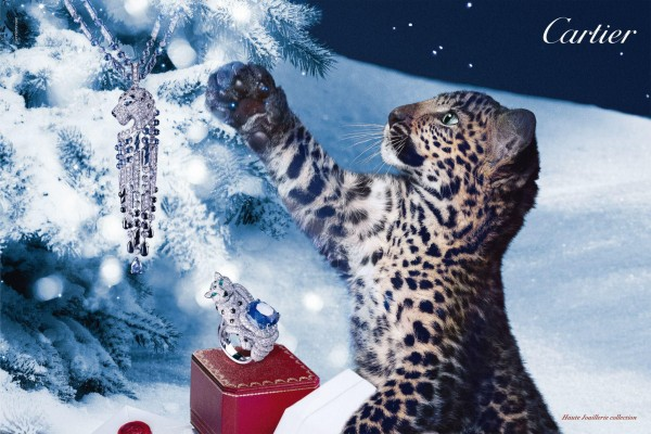 Cartier-Winter _tale-2