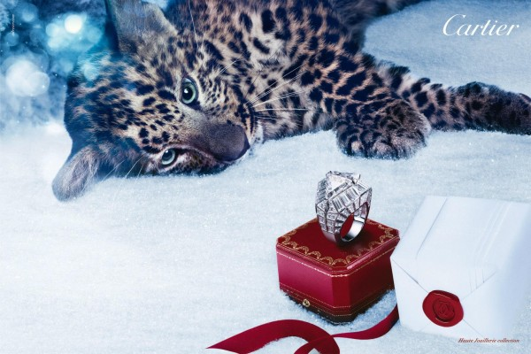 Cartier-Winter_tale_3