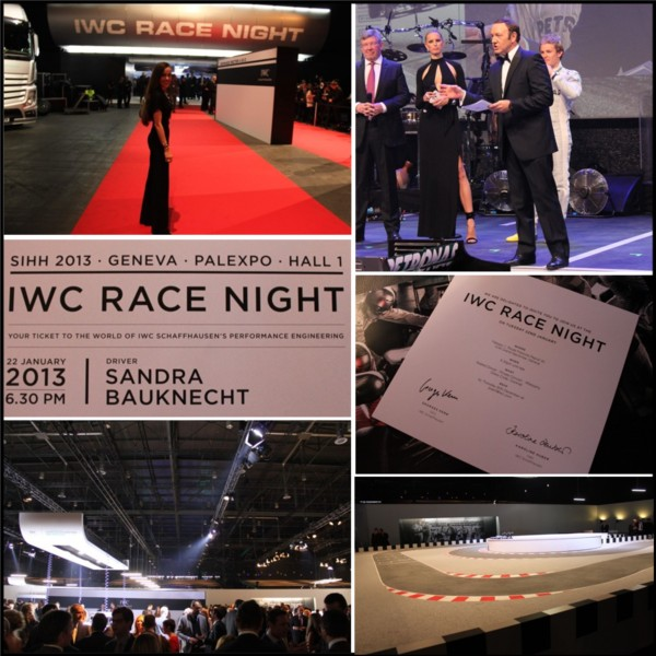 IWC_SIHH2013_Race_night