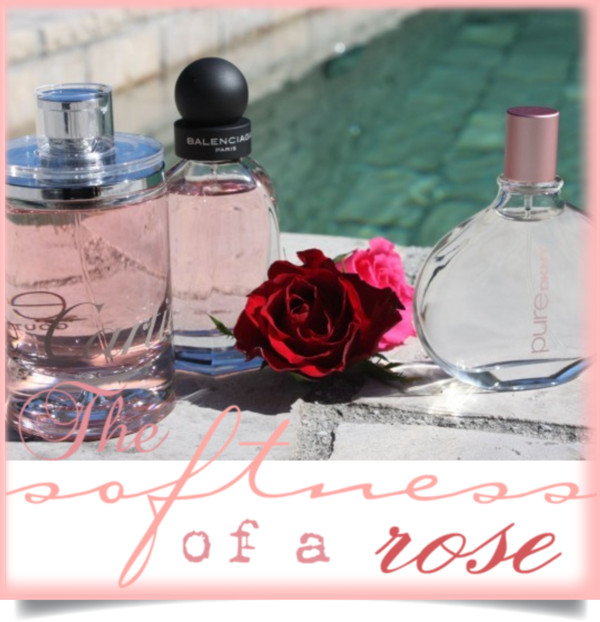 Rose_Fragrances