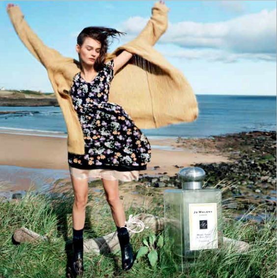 Jo Malone Woood Sage & Sea Sat