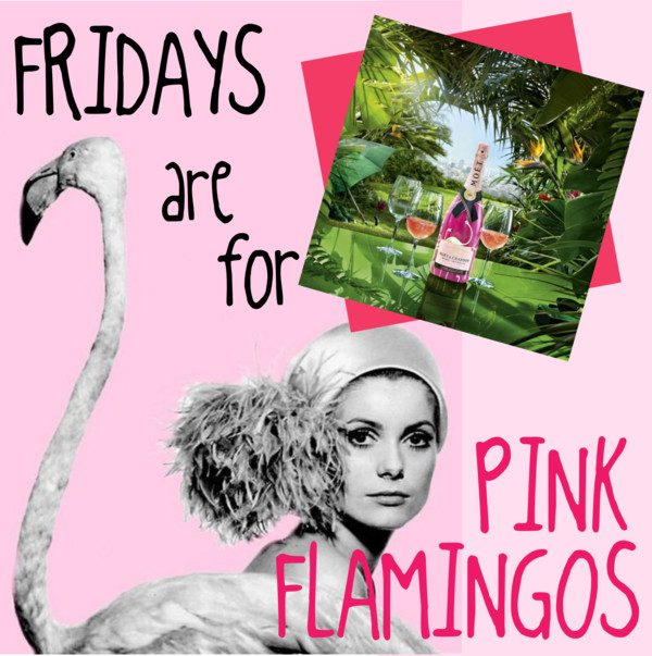 Pink_Flamingos_Fridays